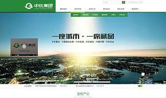 中东集团网站建设项目